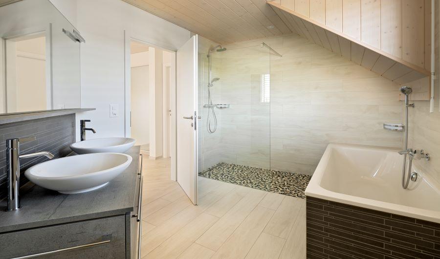 prologis-projet-a-vendre-maison-individuelle-charrat-valais-bain