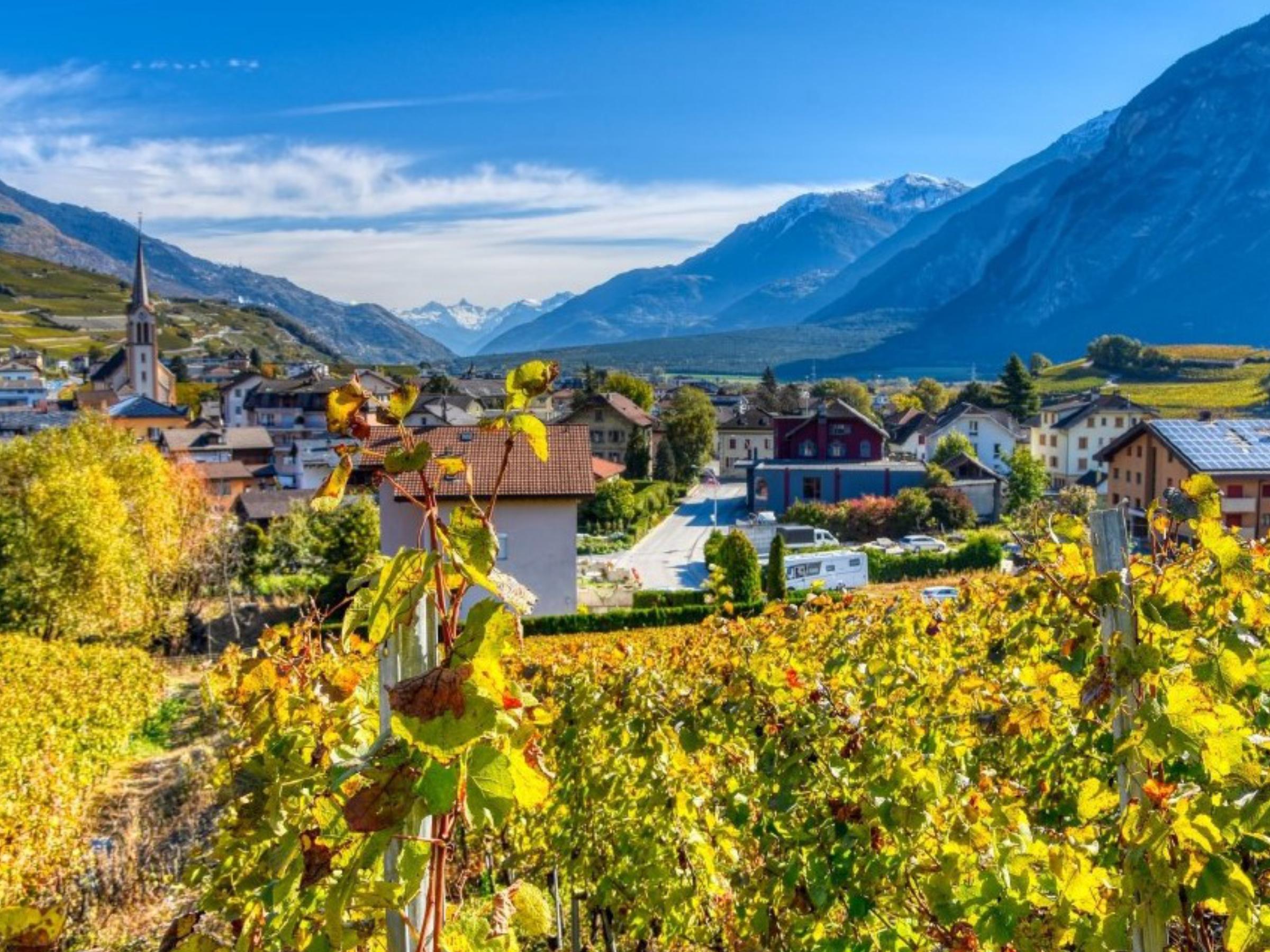 Prologis — Projet à vendre — Maison individuelle à Salgesch — Valais